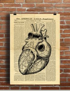 Human Heart Antique Anatomy Vintage Printable Collage Old Newspaper Wall Art Print Home Dec Newspaper Drawing, Newspaper Paper, Vintage Newspaper, Dictionary Art, Human Heart, Beautiful Wall, As You Like, Digital Image, Wall Art Prints