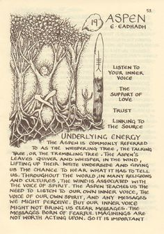 The Tree Ogham Books & Prints Glennie Kindred Jig Saw, Wiccan, Magick, Witchcraft, Vikings, Celtic Mythology, Celtic Tree, Symbolic Tattoos, Popular Tattoos