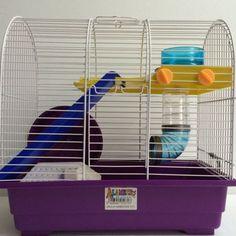 jaula-hamster-alamber-titti www.donagro.es