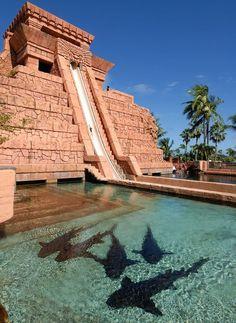 Leap of Faith, Atlantis, toboggan, Bahamas