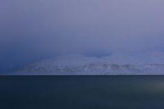 Svalbard, Norge, naturfotografering