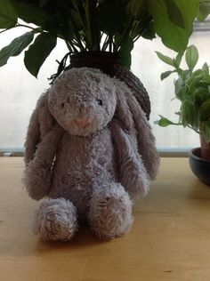 FOUND in BROCKLEY, LONDON  This cuddly bunny was found lying all bedraggled in the rain in Brockley. Contact: https://twitter.com/ChristineHever on twitter or https://www.facebook.com/TeddyBearLostAndFound