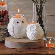 Nature's Love™ by PartyLite Mama & Baby Owl Candle Holder Set Romantic Candles, Best Candles, Diy Candles, Tea Light Candles, Tea Lights, Beeswax Candles, Unique Candle Holders, Candle Holder Set, Bougie Partylite