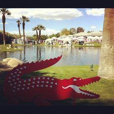Lacoste pool party #coachella #lacoste