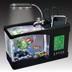 Fascinations | USB Desktop Aquarium I'm not sure I really believe that this works, but it sure looks nice