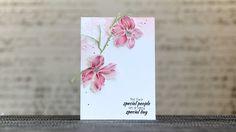 cardmaking technique video: Coloured Pencils on Vellum ... Wild Hibiscus ...