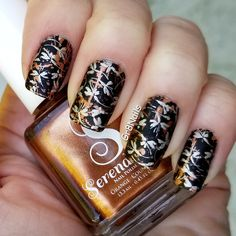 """Fall/Thanksgiving nail art with Lina Make Your Mark 3 nail stamping plate.  Serendipity polish """"Dazzling Sparklers"""" and Mundo de Unas """"Light Gold"""" and """"Black"""""""