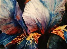 """Iris"" Watercolor by Catie Daniel"