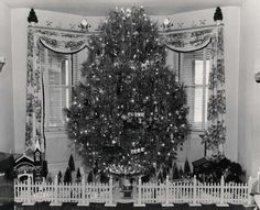 Pinner said-This is my Grandfather's Christmas tree mounted in his homemade rotating stand. The photo was taken in Gary Indiana about 1950. There are slip rings in the base which allow 30 combinations of lighting on the tree as it turns. I inherited the base and still use it every year with a real tree...