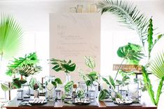 HEAD TABLE:  A modern mix of assorted bud vases and cylinder vases with tropical greenery; monster leaf, areca leaf, aralia leaf, Boston fern and bouganvillea accents along the center of the table. Pre-set vases for bride/bridesmaids bouquets and tall taper candles in cylinder vases. Votives sprinkled throughout of assorted tall clear cut votives and tall clear votives