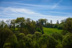 Sumer is icumen in Warm Weather, Country Roads, In This Moment, Landscapes, Image, Scenery, Driveways, Paisajes