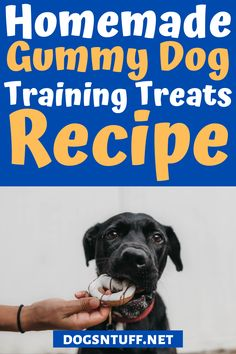 Are you looking for an easy to make dog treats recipes for your dog training? This treat only needs THREE ingredients! #fdogrecipes #dogtreats #dogfood Dog Training Treats, Training Your Dog, Dog Treat Recipes, Dog Food Recipes, How To Make Homemade, Healthy Herbs, Dog Facts, Homemade Dog Treats, Dog Quotes