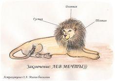 Магия биологии, вопрос почемучки, грива льва