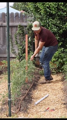 Raised Garden Beds Discover How to Stake & String Tomatoes with the Florida Weave In this video Ill show how to string tomato plants the same way many farmers do using the Florida Weave technique. Veg Garden, Vegetable Garden Design, Garden Trellis, Plant Trellis, Diy Garden Fence, Potager Garden, Edible Garden, Vegetable Gardening, Trimming Tomato Plants