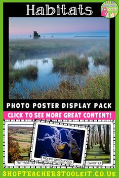 This Habitats Photo Poster Display Pack can be used for classroom displays, as well as being a super visual resource to engage students as they begin their learning journey about different habitats in the world! Lots of talking and listening, plus many questions should ensue! The photo posters are colourful and vibrant, and each includes a name label. Classroom Hacks, Classroom Posters, Classroom Displays, Classroom Organization, Classroom Decor, Teaching Social Studies, Teaching Resources, Teaching Ideas, Earth Science