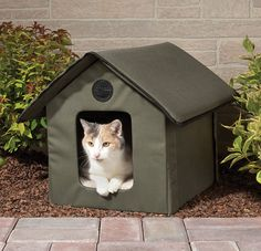 Heated Outdoor Cat House. An excellent product for outdoor cats.  My Kids are indoor animals....their new abode will be the first time outside, but safe and surrounded by a mesh netting.  Over protective Momma