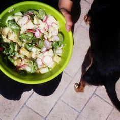 Finally some sunshine! Potato salad and dogs #whatveganseat #vegansofig #veganfoodshare #yummyinmytummy #rawtillwhenever #feelthelean #rawtill4 #starchsolution #vegan #potatoes #foodporn