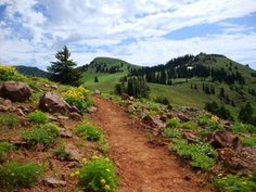 Council Mountain, Idaho