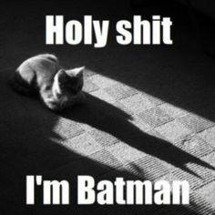 Holy shit I'm batman