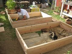 Follow the link on this to see a great article on how to make raised boxes.  I'm totally going to do it.