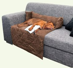 Find This Pin And More On Dog Beds