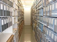 How do Archivists organize collections?