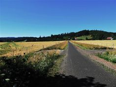 BANKS-VERONIA STATE TRAIL: OR -  21 miles of paved trail between the two Oregon towns of Banks and Vernonia.Old railroad trestles, wildflowers and wildlife add to the charm of this nature-lover's trail. The trail is steep in places so cyclists are asked to walk their bikes or slow way down for your own safety and that of other trail users. The trail climbs from Banks toward Vernonia, passing through the Hilltop Day Use Area (camping available).