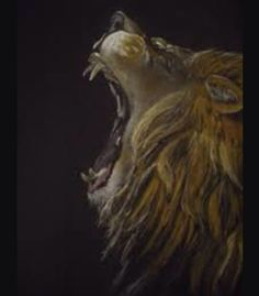 Lions Roaring Wallpaper Hd