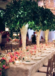 Todd Events - Photos - Destination Wedding
