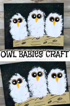 owl babies craft to go with the book Owl Babies by Martin Waddell. Cute owl craft for kids and fall art project for kids.Adorable owl babies craft to go with the book Owl Babies by Martin Waddell. Cute owl craft for kids and fall art project for kids. Kids Crafts, Winter Crafts For Kids, Art For Kids, Craft Kids, Fall Art For Toddlers, Owls For Kids, Autumn Art Ideas For Kids, Painting Crafts For Kids, Baby Crafts To Make