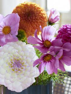 #2flowergirls http://www.tastesheriff.com/