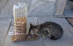 Comedor para animais feito de garrafas de água