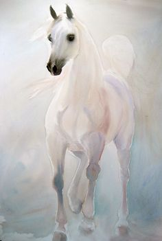 Beatrice Bulteau #watercolor #horses - Arabian White (Dunway Enterprises)