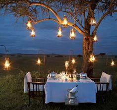 dinner in the bush