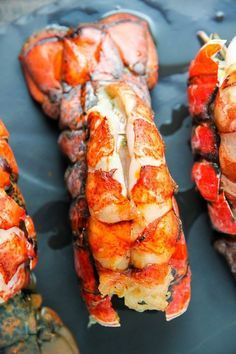 How to cook lobster tails in the oven. Ready in just 15 minutes, these are delicious with melted butter and lemon. How to cook lobster tails in the oven. Ready in just 15 minutes, these are delicious with melted butter and lemon. Lobster Tail Oven, Baked Lobster Tails, Shrimp And Lobster, Grilled Lobster, Cooked Lobster, Lobster Dip, Steamed Lobster, Lobster Pasta, Lobster Bisque