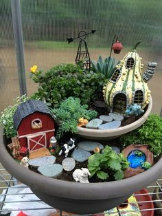 Barn yard fairy garden.
