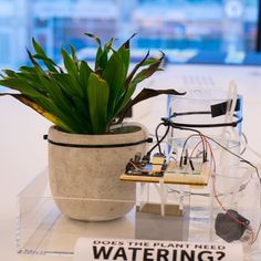 When apes are on holiday (or feeling lazy) the office plants suffer! That's why we've started to experiment with possible automated systems for watering plants. (Sure there are a couple of more low tech alternatives for this but where's the fun in that?) Want to get a closer look at our IoT projects and try out some of your own? This Saturday we are hosting a IoT hackathon at our offices! If you're interested click the link in our profile for more info. #waterplants #plants #loveplants…