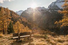 Wanderung Saas Almagell: Rundweg Furggstalden im Herbst Saas Fee, Saas Almagell, Kanton, Mountains, Nature, Travel, Hiking, Autumn, Naturaleza