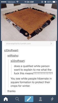 I love tumblr.