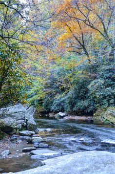 Deep Creek in the Great Smoky Mountains National Park, near Bryson City