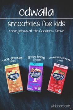 Odwalla Smoothies for Kids: 100% juice, one serving of fruit, 50% of daily vitamin C, no added sugar.