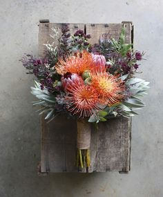 Growing and arranging beautiful Australian Native Flowers and all things Proteaceae. Protea Wedding, Blush Wedding Flowers, Flower Bouquet Wedding, Floral Wedding, Boquet, Bohemian Flowers, Unique Flowers, Beautiful Flowers, Flor Protea