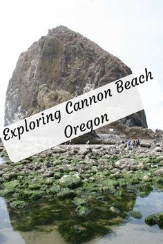 Exploring Cannon Beach in Oregon: Waves, Tide Pools and Relaxation Exploring Waves, Tide Pools and Relaxation at Cannon Beach in Oregon. The Oregon Coast is unique and breathtaking. Cannon Beach is one spot you should not miss. Koh Phangan, Destin Beach, Beach Trip, Beach Travel, Beach Vacations, Family Vacations, Beach Bum, Family Travel, Oregon Travel