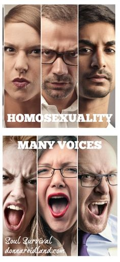 """Homosexuality: """"Many Voices"""" - There are many voices talking about this issue of homosexuality: secular, so-called Christian, and biblical. How do you know what is right and what is wrong? - Soul Survival"""