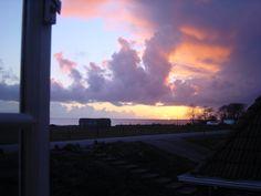 Sea view summer evening