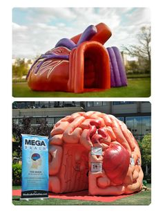 Medical Inflatables, I would love the brain one if I were allowed to teach a psychology class. It would be a great even to get kids to REALLY see the brain in a new way!