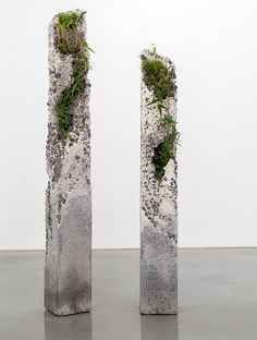 Jamie North -Terraforms 2014- The Inconstant Ones 2014 - cement, marble waste, limestone, steel slag, coal ash, plastic fibre, tree fern slab, various Australian native plants and Spanish moss 223.0 x 26.0 x 26.0 cm and 191.o x 26.0 x 26.0 cm