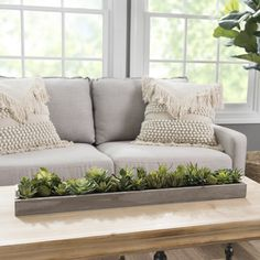 Unless you have a green thumb, houseplants can be a hassle. Never worry about over-watering again with this succulent runner! It gives your home a fresh look with no maintenance required.