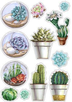 Roses_styles and pages for scrap – Cactus Printable Planner Stickers, Journal Stickers, Scrapbook Stickers, Printables, Cactus Stickers, Diy Stickers, Tumblr Stickers, Aesthetic Stickers, Watercolor Art