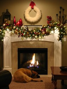 Love... justin would love this... the dog.. the fire.. christmas && coffee :)